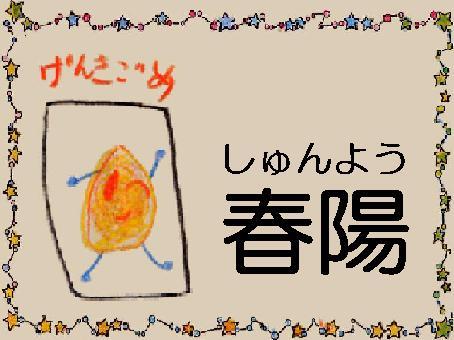 低グルテリン米 低タンパク米 春陽